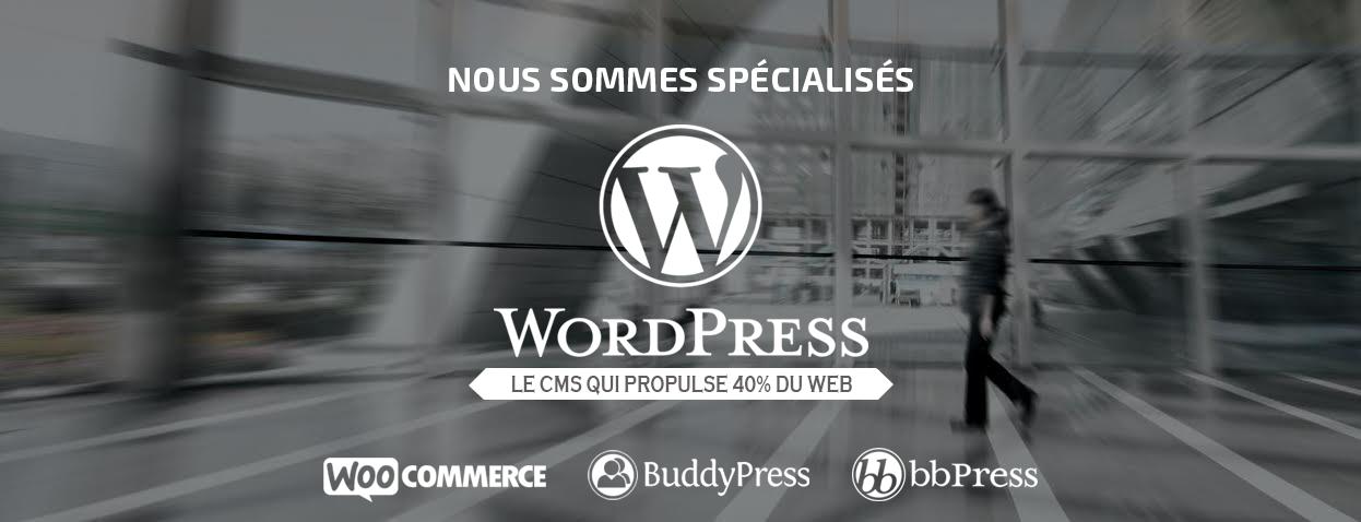 Agence WordPress à Montréal
