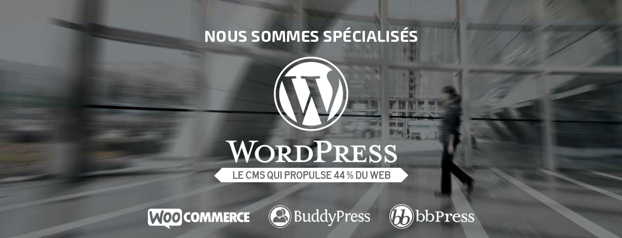 Nous sommes spécialisés WordPress, le CMS qui propulse 44% du Web