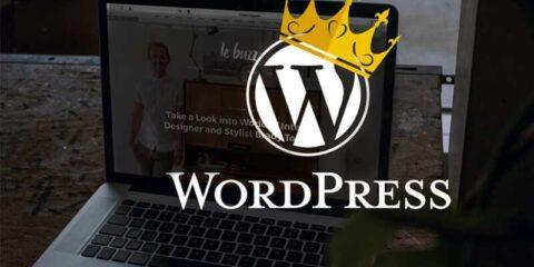 Pourquoi WordPress est le roi de tous les CMS ?