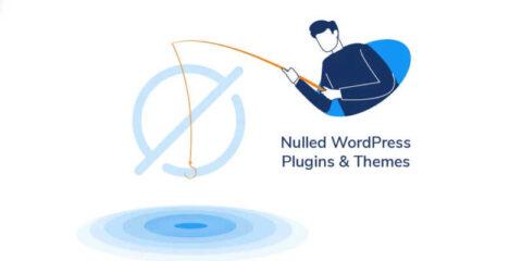Conseils concernant les Plugins et Themes WordPress piratés